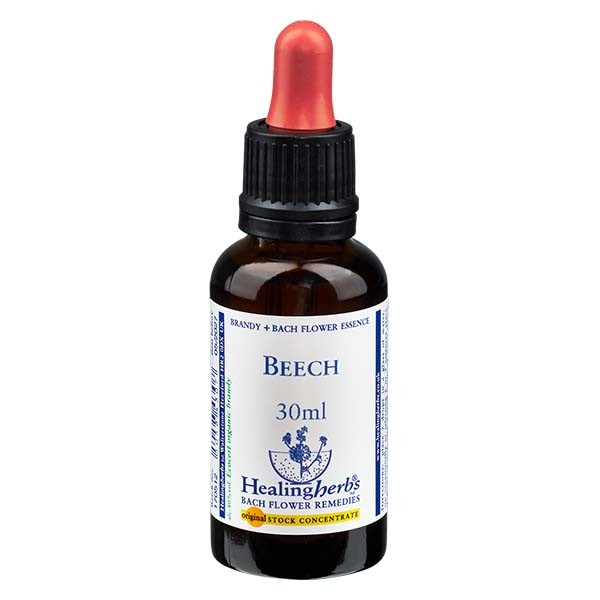 3 Beech, 30ml Essenz, Healing Herbs