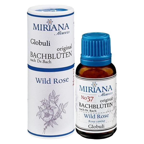 """37 Wild Rose, 20g """"Kügelchen"""", MirianaFlowers"""