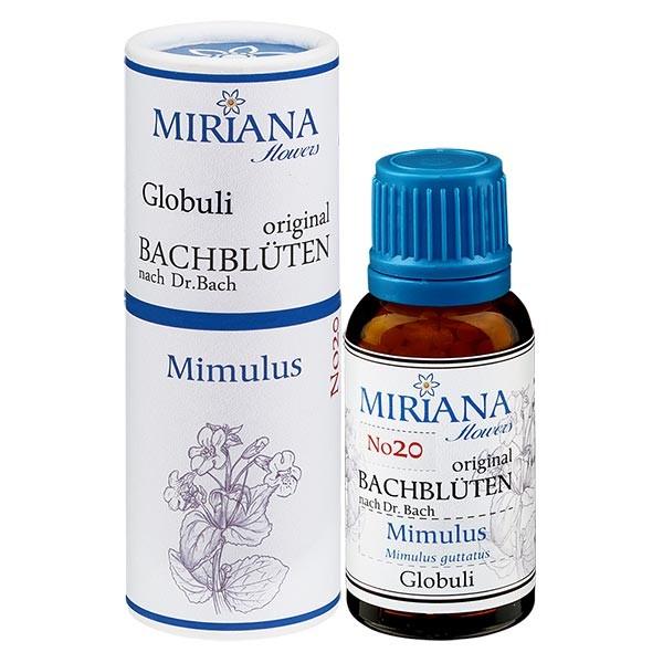 """20 Mimulus, 20g """"Kügelchen"""", MirianaFlowers"""