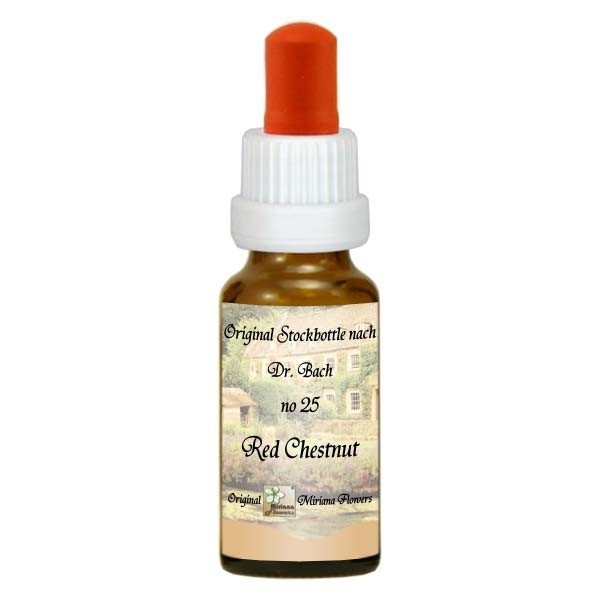25 Red Chestnut, 20ml Essenz, MirianaFlowers